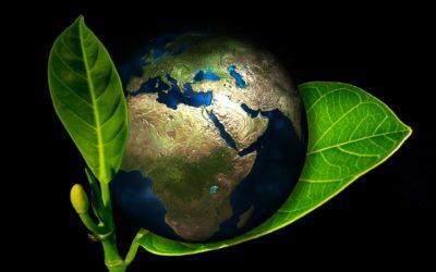 Unsere Klima- und Umweltschutzstrategie